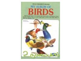 My album of Birds