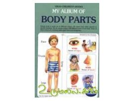 My album of body parts